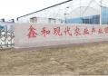 临沂鑫和花卉有限公司积极对接长三角创新经营管理模式打造乡村振兴新样板